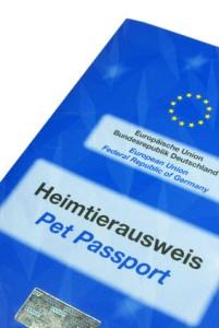 EU Heimtierausweiss Pudel Reise