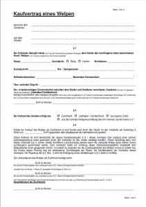 Kaufvertrag für einen Pudel Welpen. Vorlage vom Internationaler Hundeverband e.V.