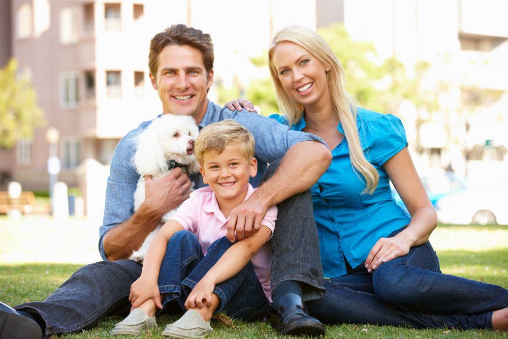 Pudel als Familienhund kaufen