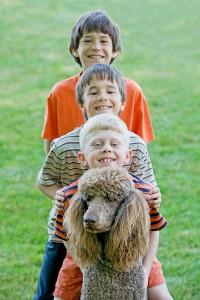 Pudel mit Kindern