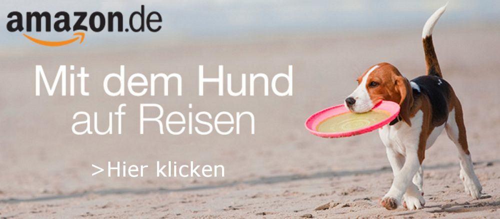 Mit dem Pudel auf Reisen: Amazon.de