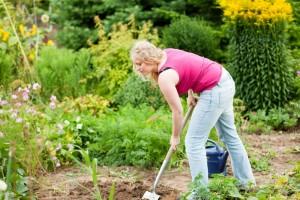 Meinen Pudel im eigenen Garten vergraben. Worauf muss ich achten?