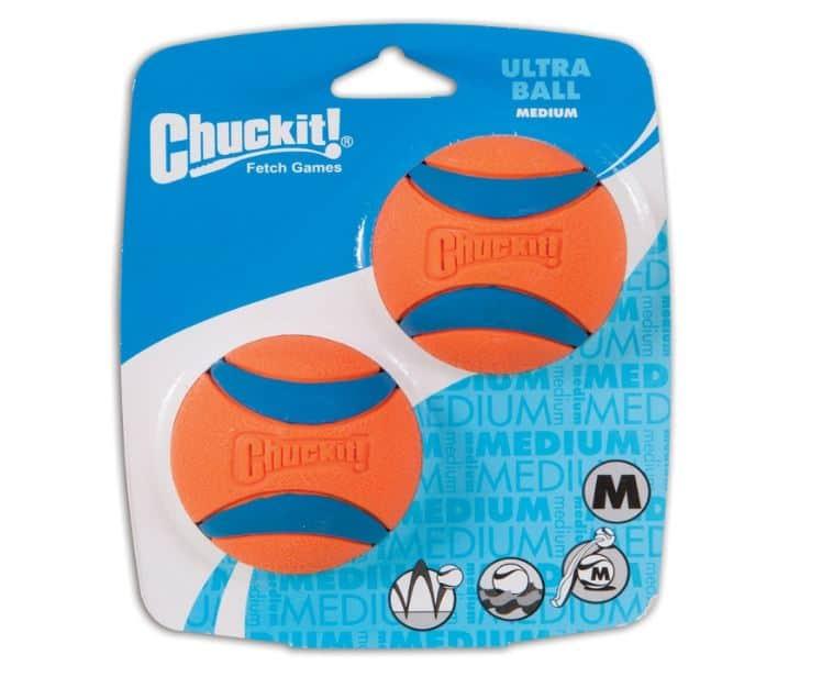 idealer Ball zum Apportieren: Pudel beschäftigen