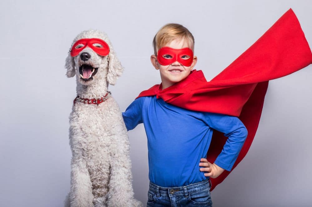 Kleiner Junge als Supermann verkleidet mit Pudel